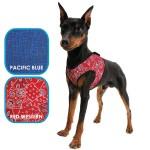 Harnais Aqua Coolkeeper pour chien