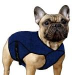 Manteau pour chien Aqua Coolkeeper