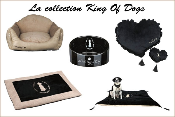 Collection King of Dogs