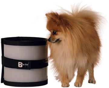 Collier BiteNot petit chien