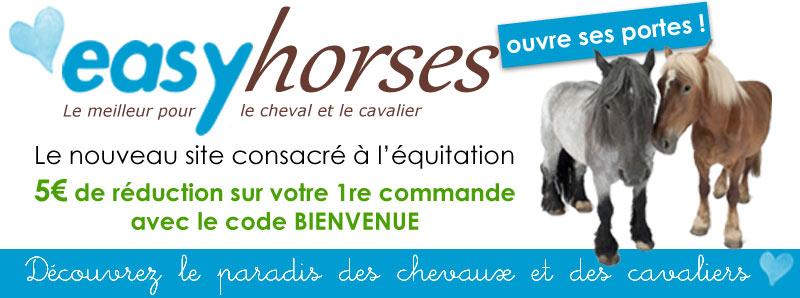 easyhorses-2