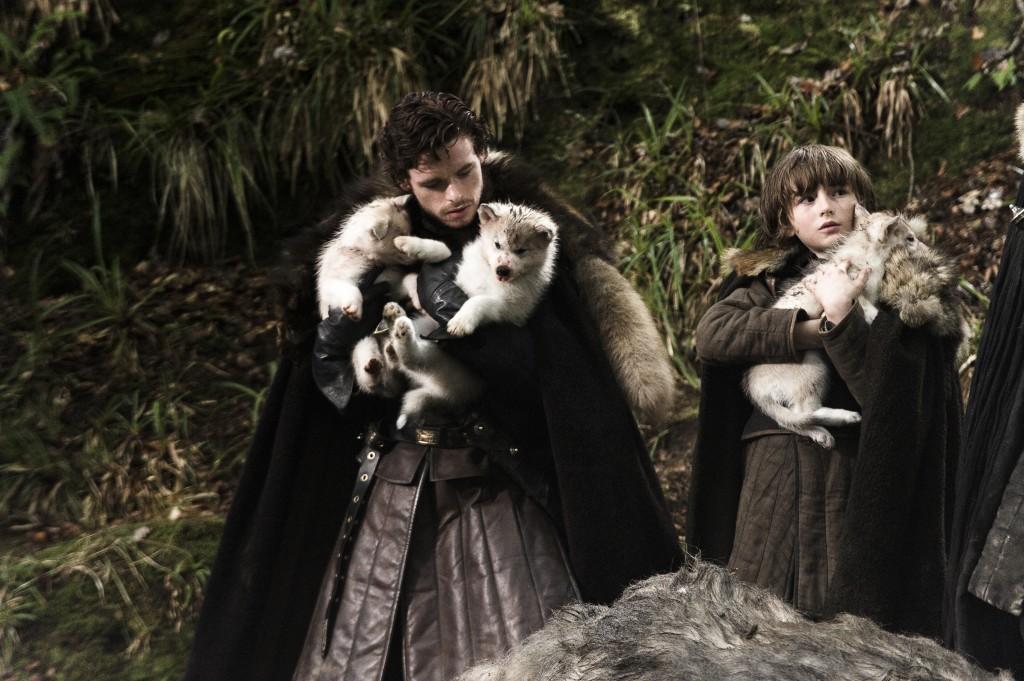 Bran Stark, Robb Stark et les louveteaux