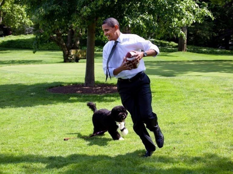 Barack Obama et Bo