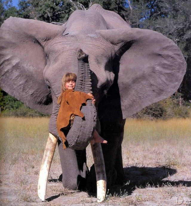 Tippi et Abu l'éléphant