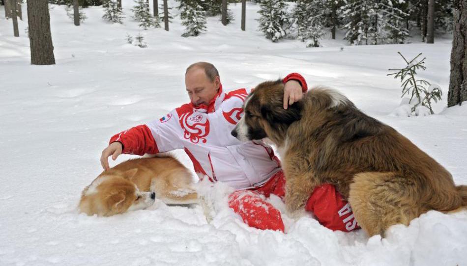 Vladimir Poutine et ses chiens