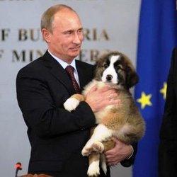Vladimir Poutine et son chien