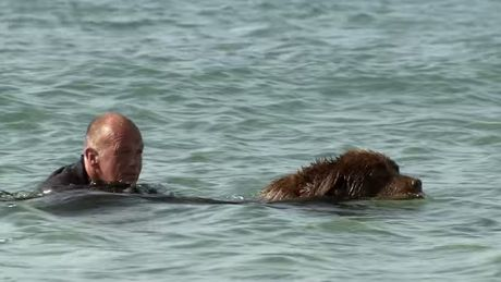 bilbo-le-chien-sauveteur-en-mer-avec-son-maitre-steve-jamieson