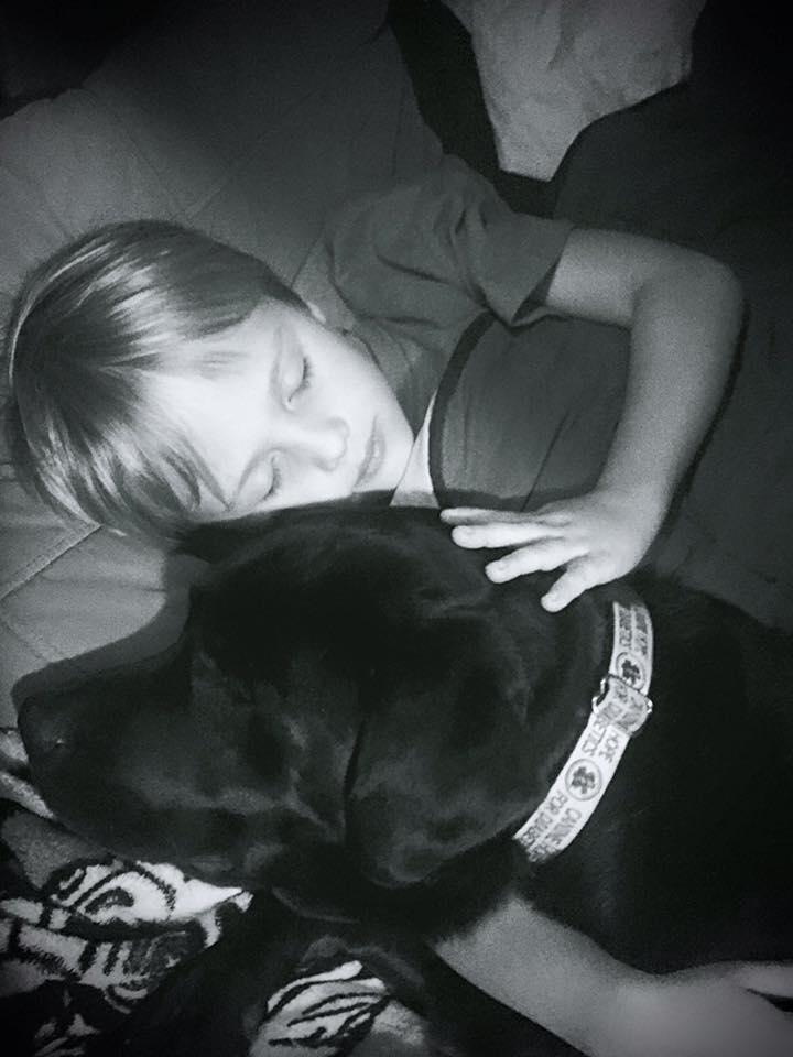 Luke et Jedi le chien d'alerte pour diabétique
