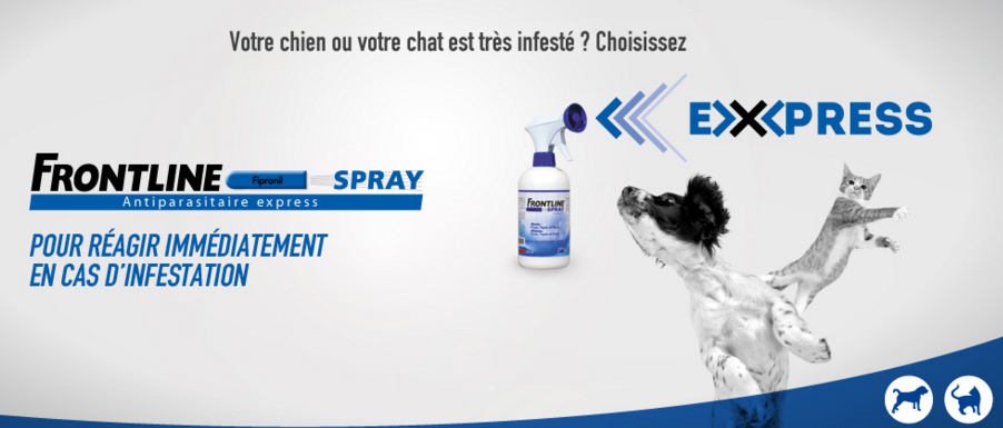 frontline-spray chiens et chats