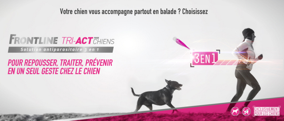 frontline-tri-act chiens