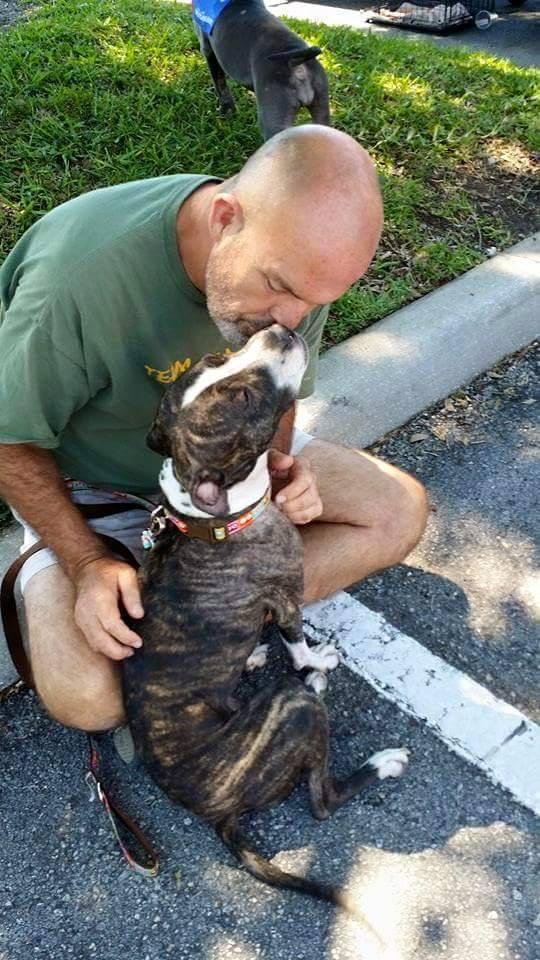 Cabela la pitbull et son vétérinaire