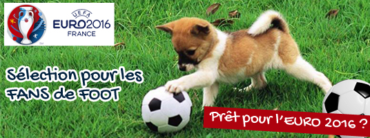 Euro 2016 pour chien