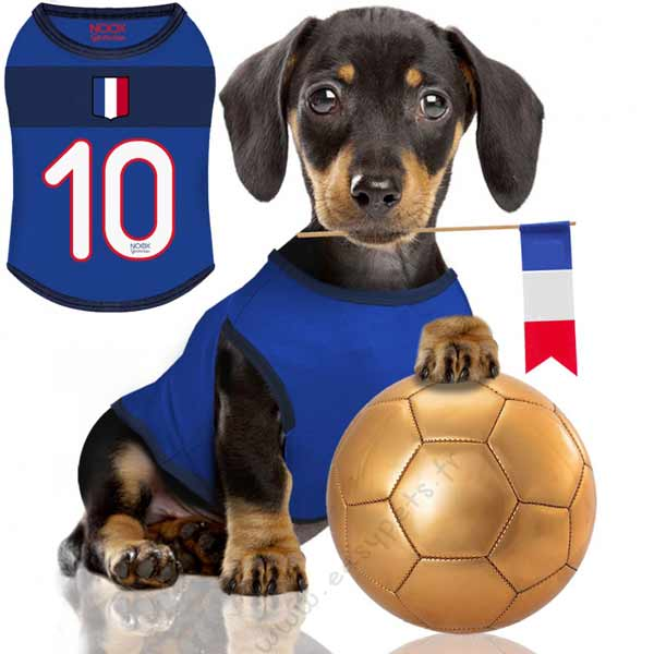 t-shirt-pour-chien-foot-supporter-france-euro-2016