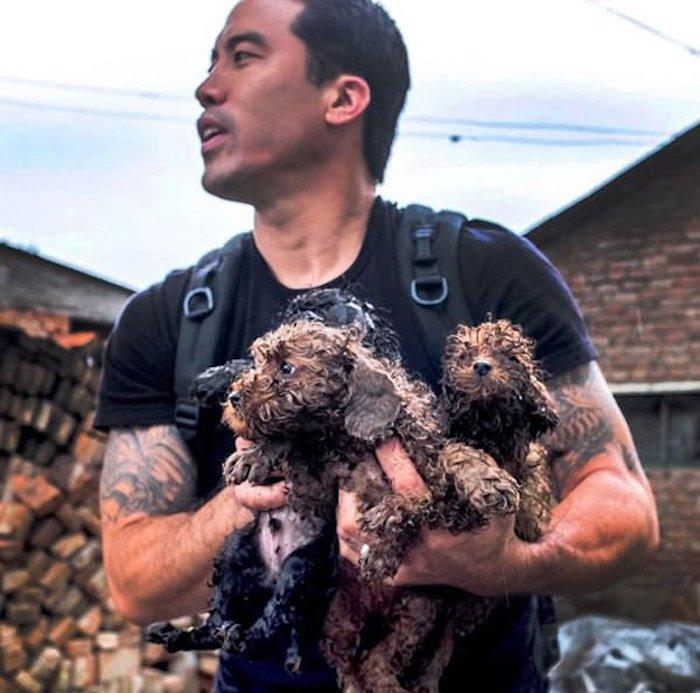 Marc Ching au festival de Yulin