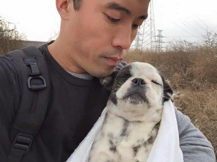 Marc Ching et les chiens sauvés