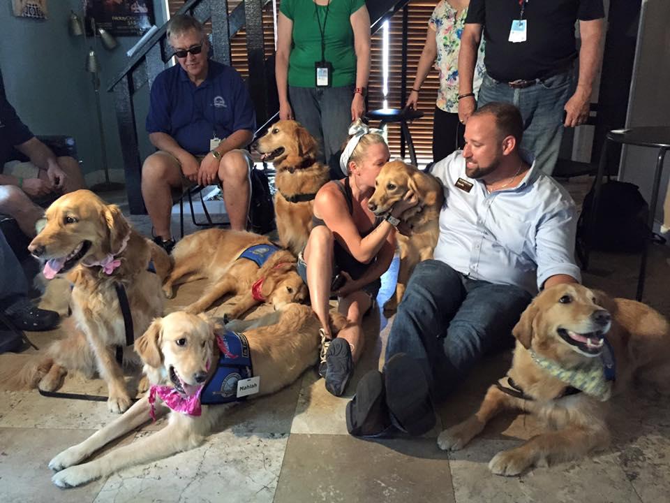 chiens sauveteurs de la fusillade d'Orlando