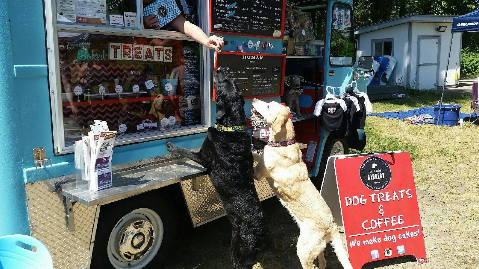 Food Truck pour chiens