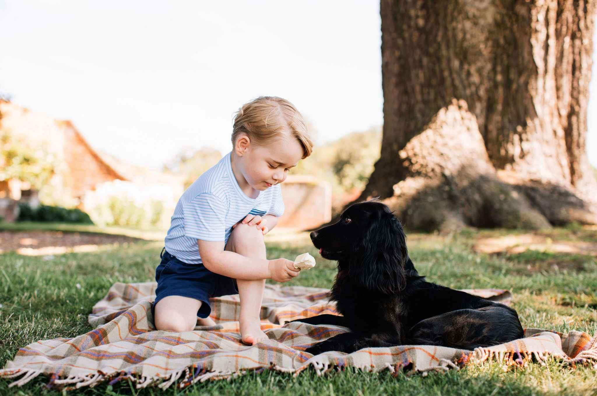 Le Prince George et son Cocker Lupo
