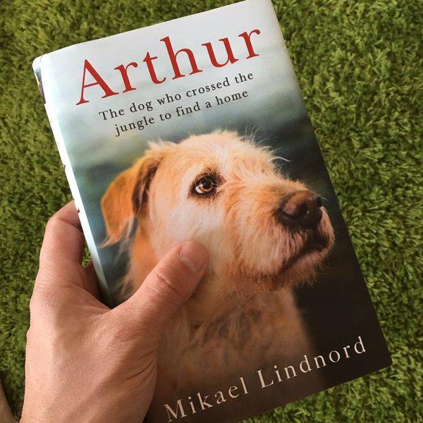 Le livre Arthur