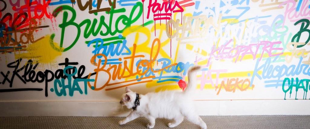 Les chats du Bristol ©Hotel Le Bristol Paris