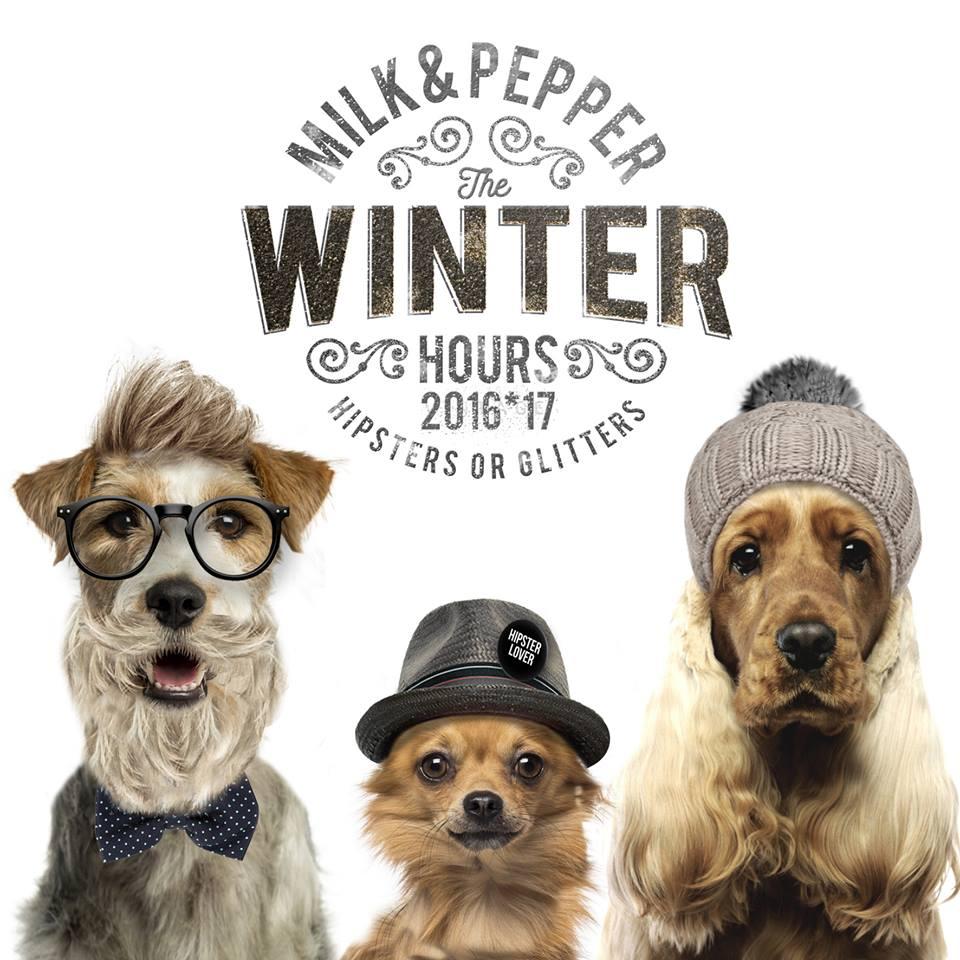 Milk & Pepper Hiver 2016 petits chiens