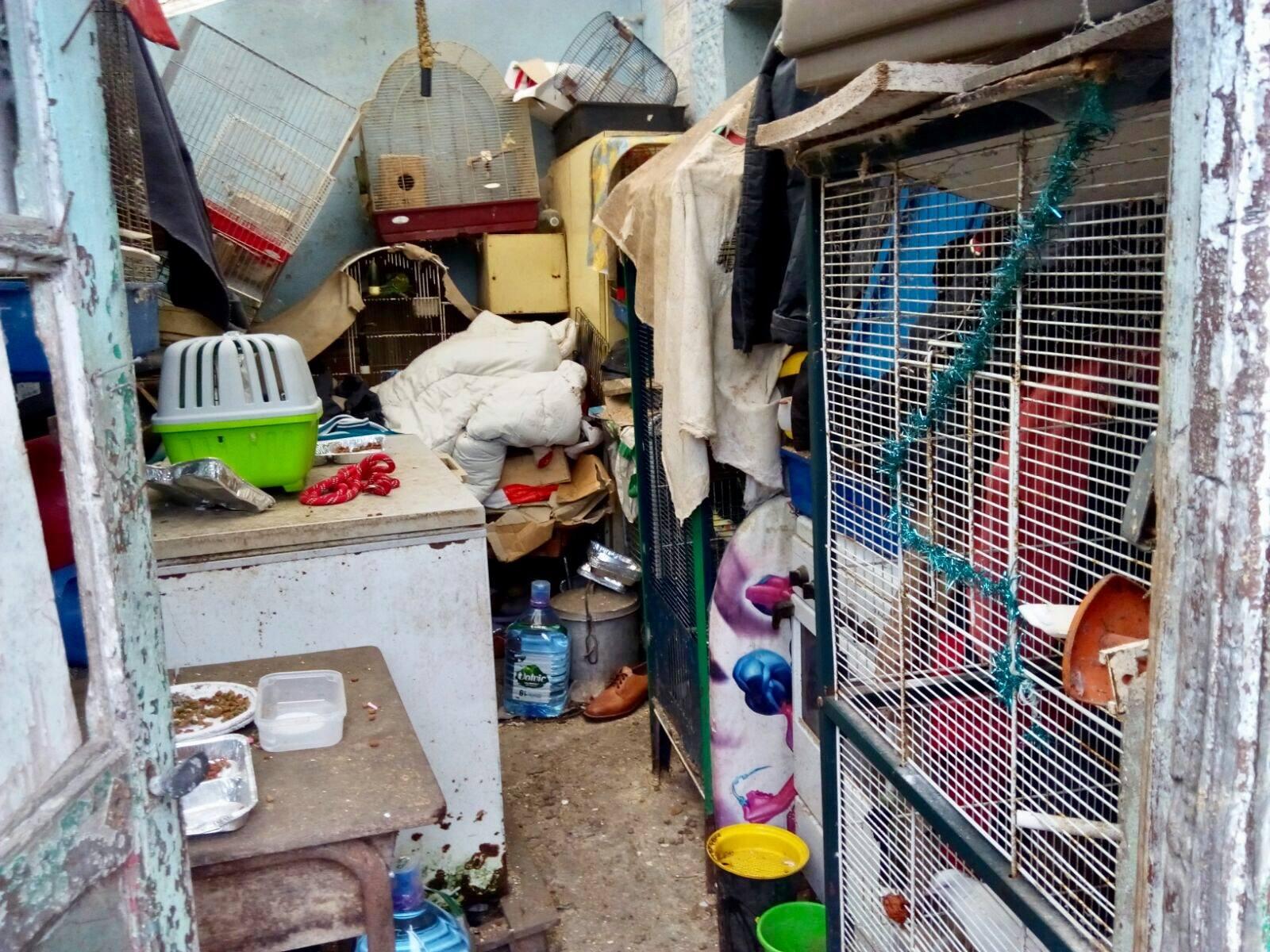 Ils vivaient dans 10m² avec 60 animaux