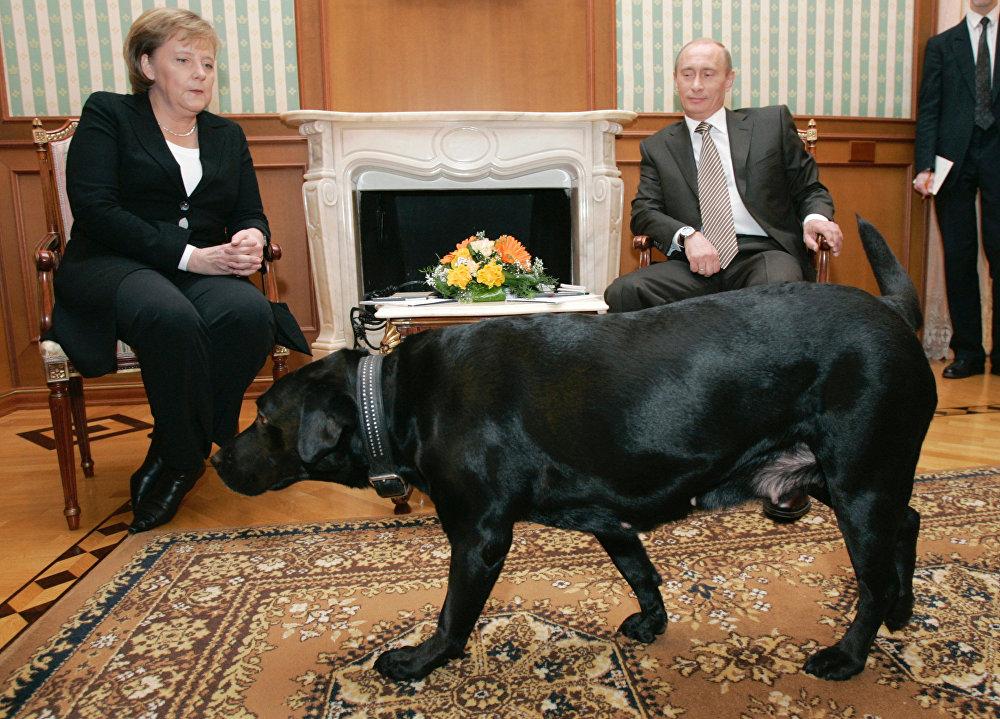 Vladimir Poutine et Koni le Labrador