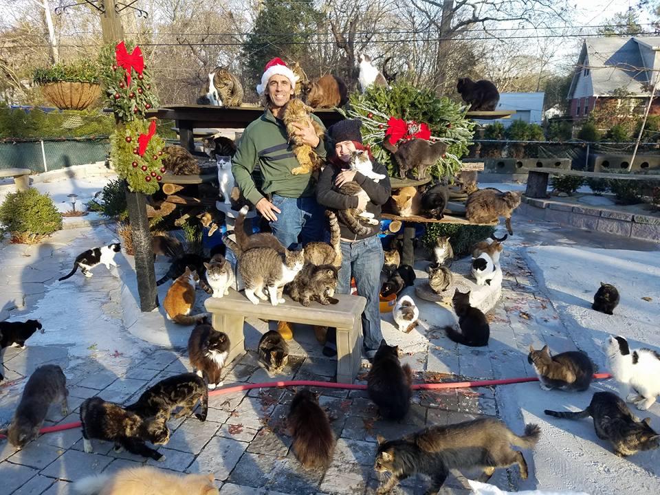 Chris Arsenault et le Happy Sanctuary Cat