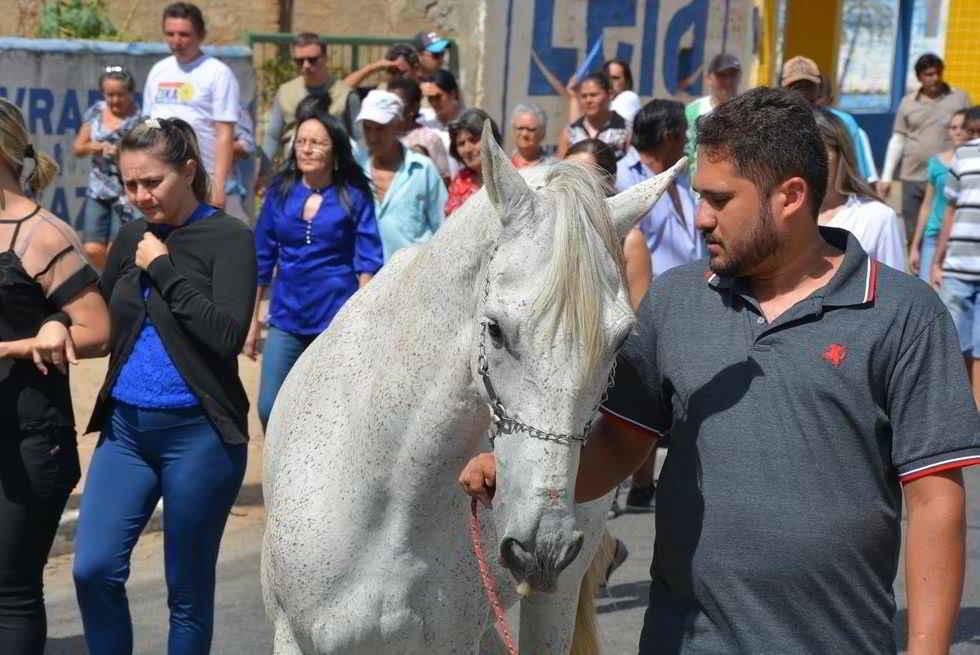 Le cheval Sereno