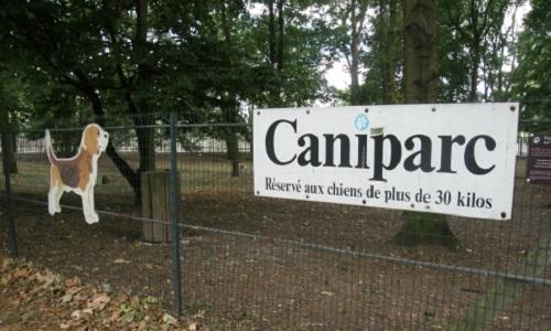 Parc à chiens Paris