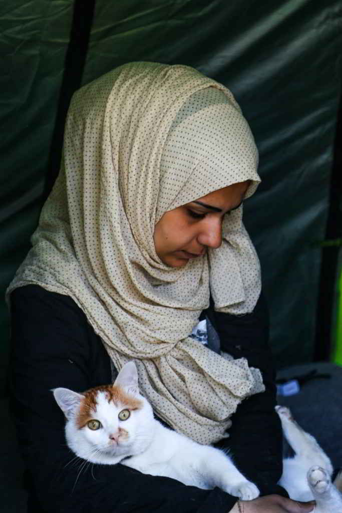 Le chat Tabboush et sa famille Syrienne