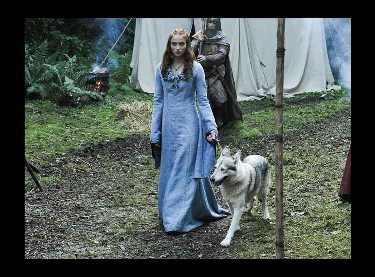 Sansa Stark et sa louve Lady