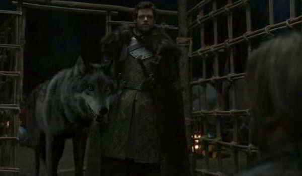 Robb Stark et son loup Vent Gris