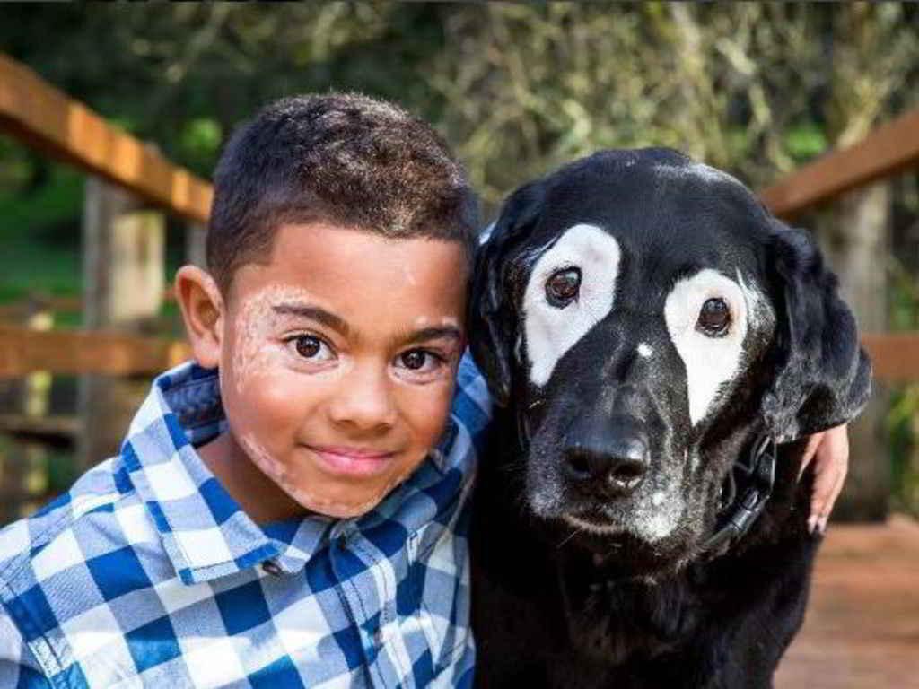 Carter et le labrador Rowdy
