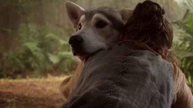 Arya Stark et sa louve Nymeria