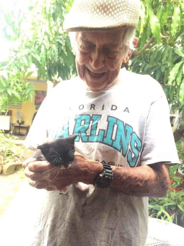 Jimmy et les chatons