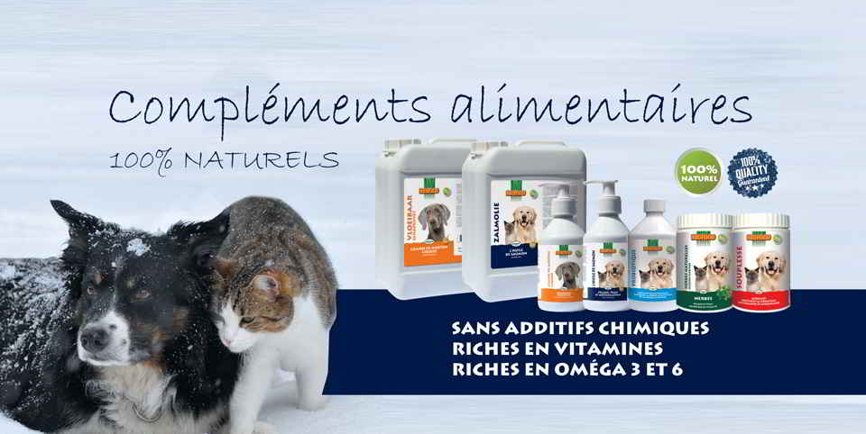 Biofood Chiens et chats