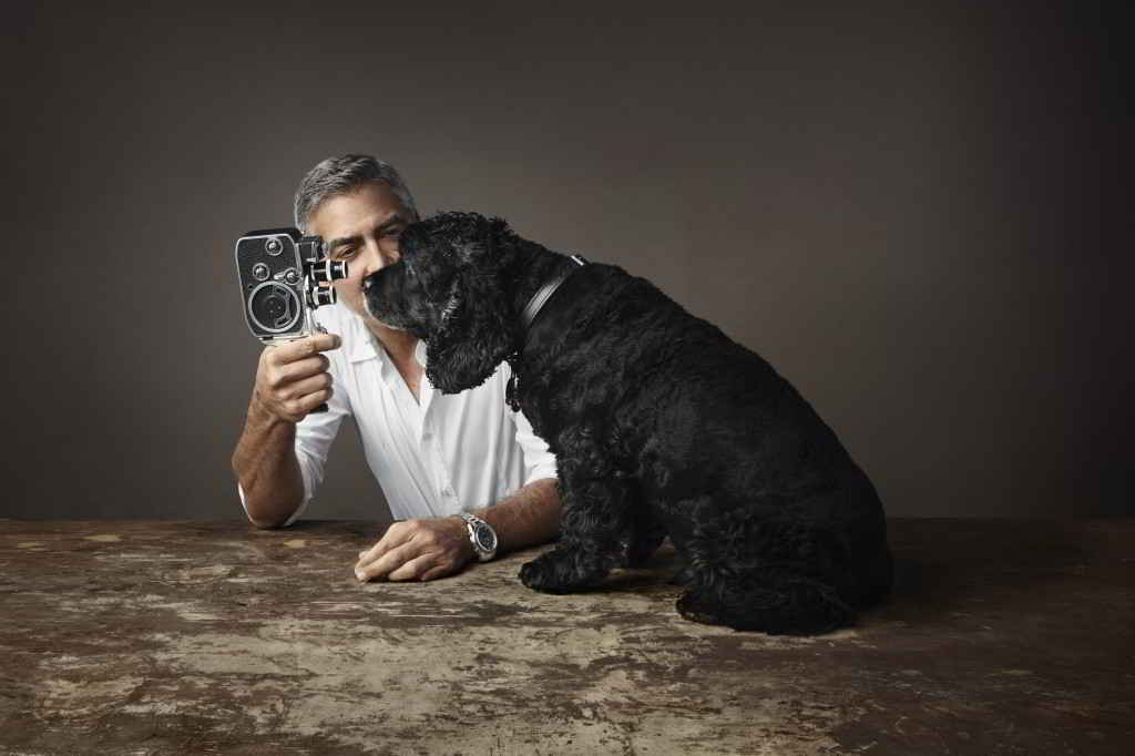 George Clooney et son cocker Einstein