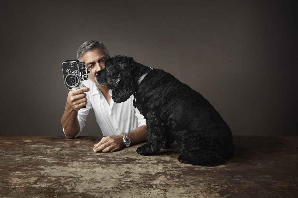 George Clooney et son cocker Einstein