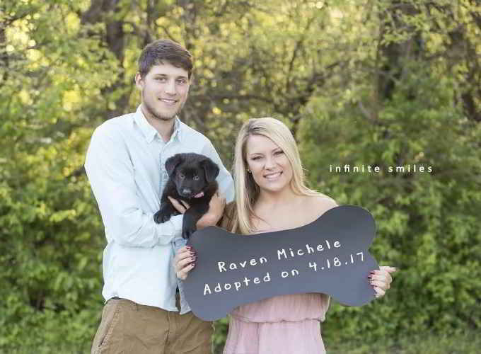 Raven le chiot et ses parents