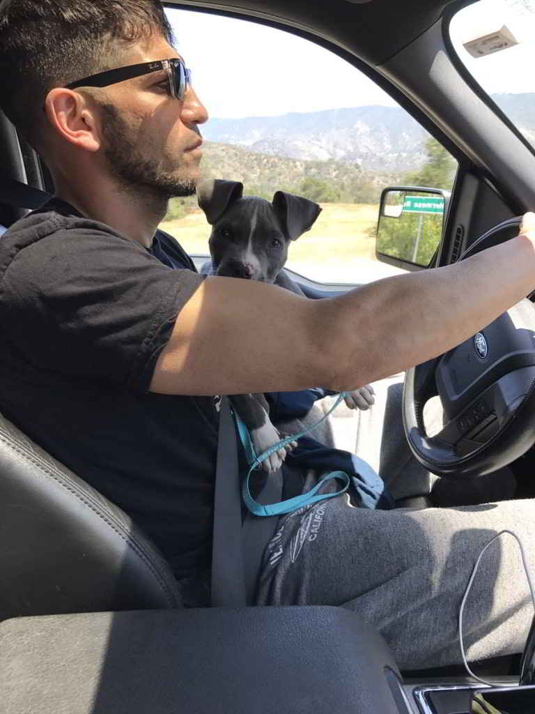 Jon Bernthal et son chiot Pitbull