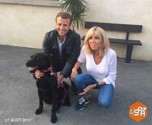 Nemo le chien de Brigitte et Emmanuel Macron