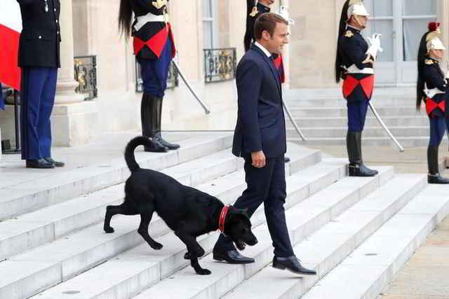Emmanuel Macron et Nemo