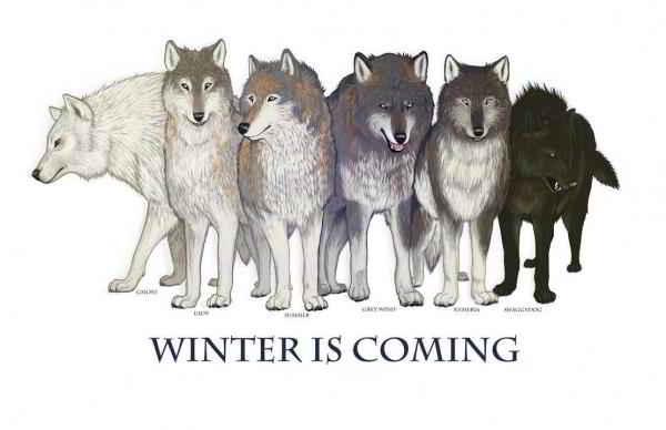 Les loups garous des Stark