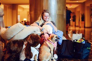 Les chiens à l'abri durant l'ouragan Irma
