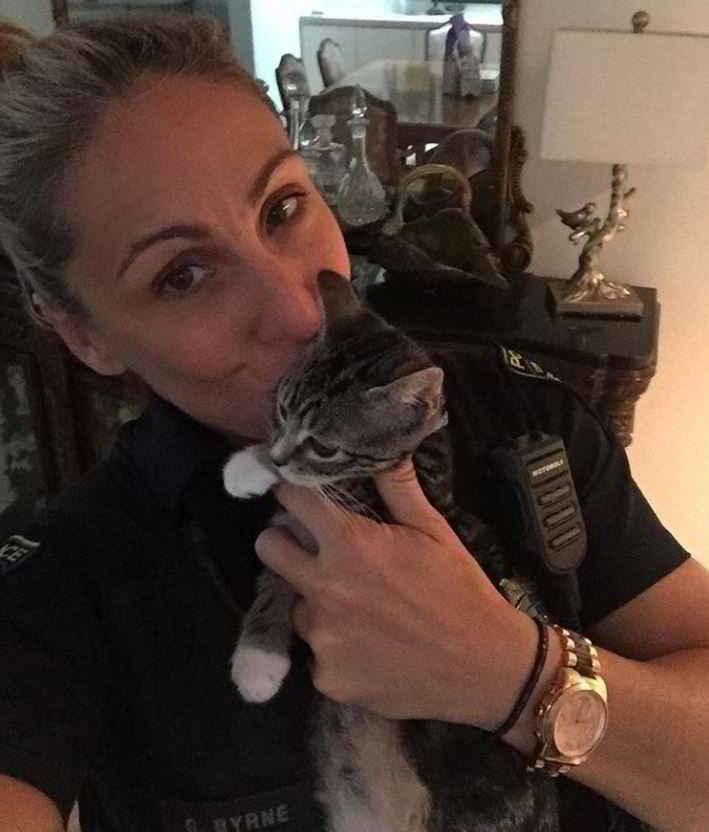 Gretchen Byrne et les chats
