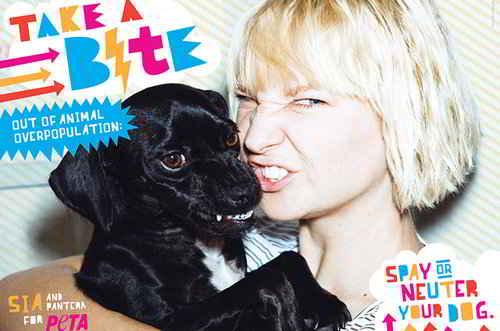 La chanteuse Sia et Pantera