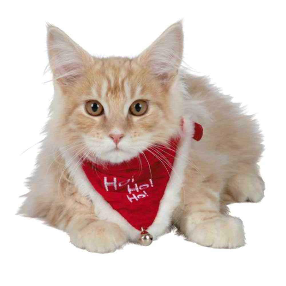 bandana-noel-chien-chat