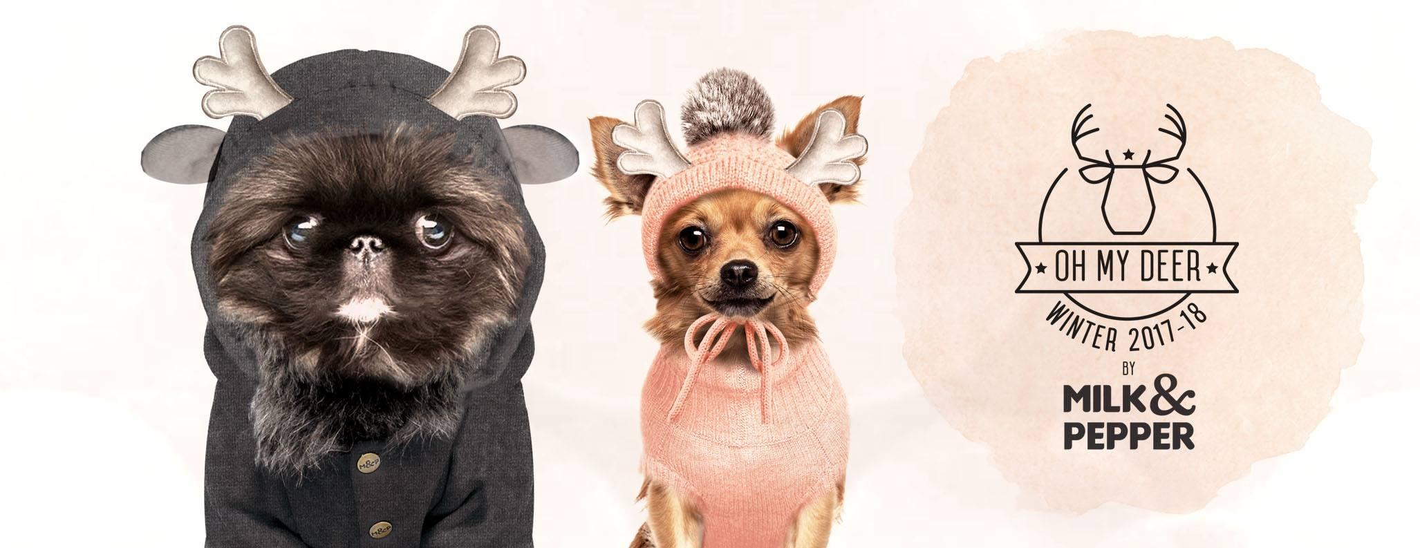 Milk & Pepper Hiver 2017 petits chiens
