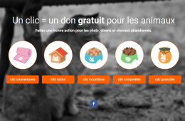 Page d'accueil de Animal Webaction